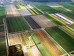 Иностранная недвижимость: партнерское соглашение на сумму 100 млн euro принято в Голландии