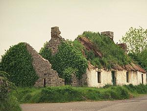 Ирландский жилищный рынок улучшится в 2011 году