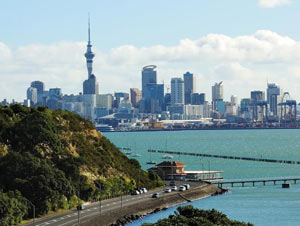 Rental prices in Auckland steady as activity rise, new data shows